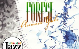 Yuki Arimasa Forest 192kHz/24bit/surround